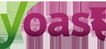 icon-yoast